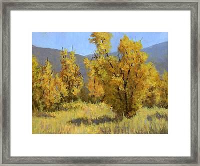 Wild Autumn Framed Print by David King