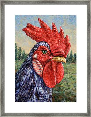 Wild Blue Rooster Framed Print by James W Johnson