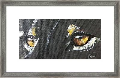 Wild Eyes Framed Print by Angela  Hendricks