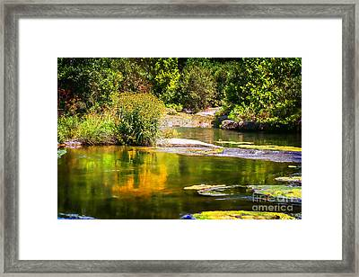 Wild Flowers On Blue River Framed Print by Tamyra Ayles