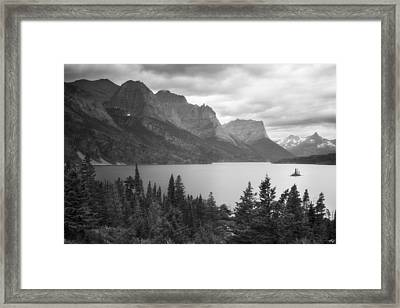 Wild Goose Chase Framed Print by Peter Coskun