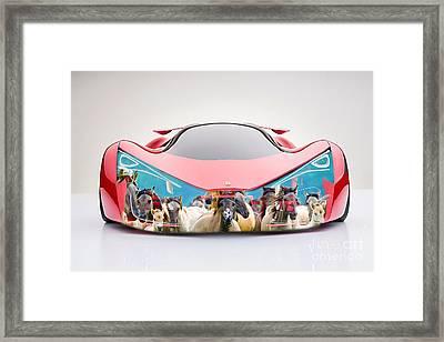 Wild Horses Ferrari F80 Framed Print by Marvin Blaine