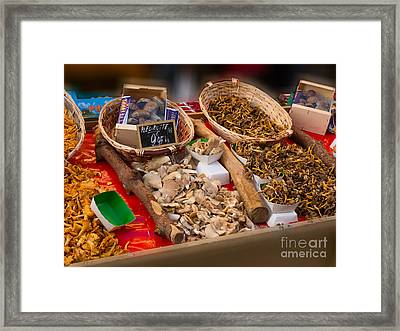 Wild Mushrooms For Sale Framed Print by Louise Heusinkveld