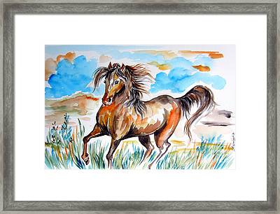 Wild Mustang Water Color Framed Print by Roberto Gagliardi