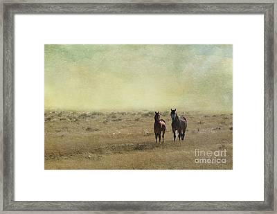 Wild Pair Framed Print by Juli Scalzi