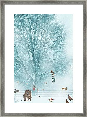 Wild Party. Framed Print by Kelly Nelson
