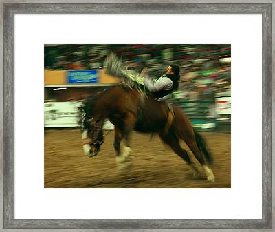 Wild Ride Framed Print by Mike Flynn