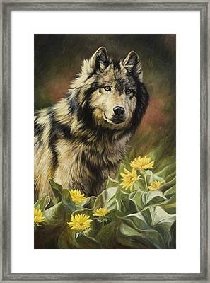Wild Spirit Framed Print by Lucie Bilodeau