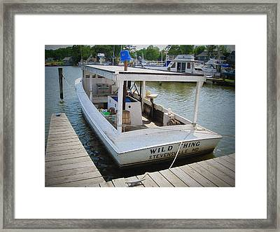 Wild Thing Framed Print by Brian Wallace