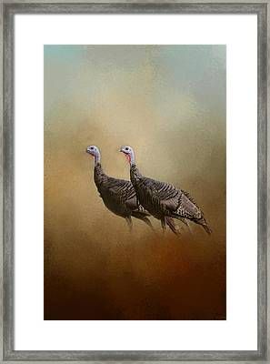 Wild Turkey At Shiloh Framed Print by Jai Johnson
