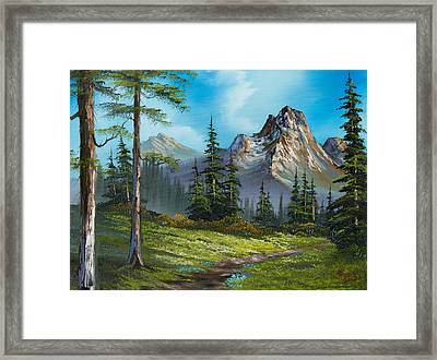 Wilderness Trail Framed Print by C Steele