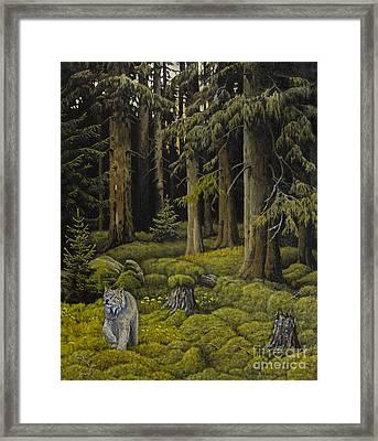 Wilderness Framed Print by Veikko Suikkanen