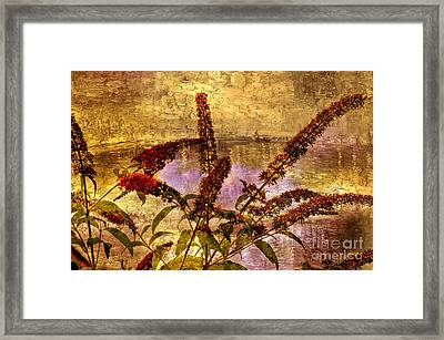 Wildflowers At The Pond Framed Print by Elaine Manley