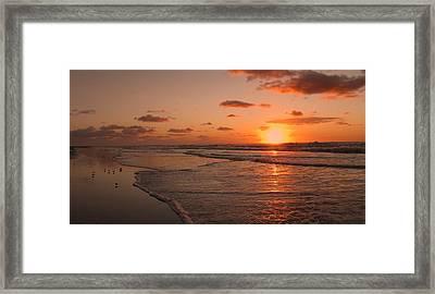 Wildwood Beach Sunrise II Framed Print by David Dehner