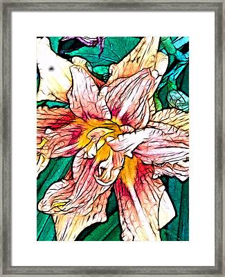 Will She Live Again? Framed Print by Jeff Iverson