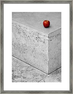 Will Someone Take You Home? Framed Print by Alexis Birkill