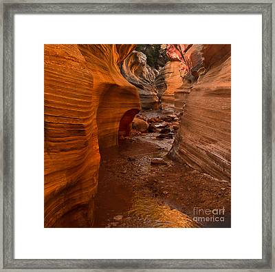 Willis Creek Slot Canyon Framed Print by Robert Bales