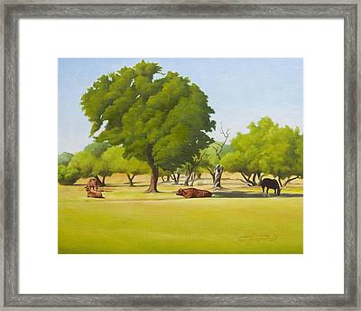 Wimberley Pastoral Framed Print by Gary  Hernandez