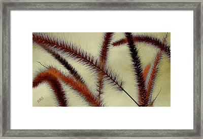 Wind Framed Print by Ben and Raisa Gertsberg