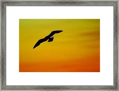 Wind Beneath My Wings Framed Print by Frozen in Time Fine Art Photography