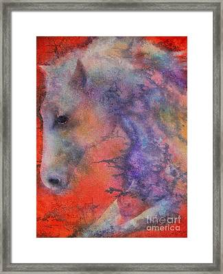 Wind Horse Framed Print by Robert Hooper