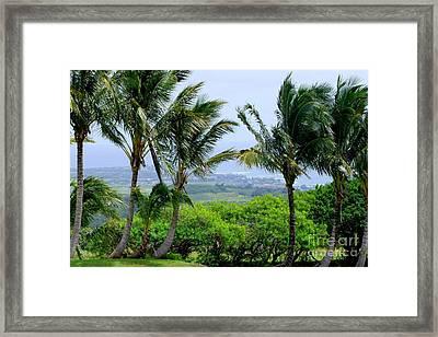 Wind Over Kalaheo Framed Print by Mary Deal