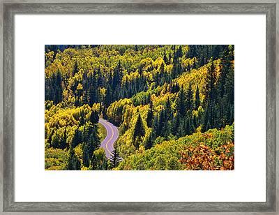 Winding Road Framed Print by Allen Beatty
