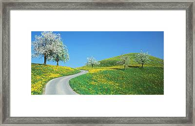 Winding Road Canton Switzerland Framed Print by Panoramic Images