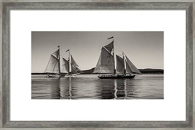 Windjammers No. 1 Framed Print by Fred LeBlanc