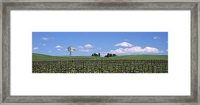 Windmill In A Vineyard, Napa County Framed Print by Panoramic Images