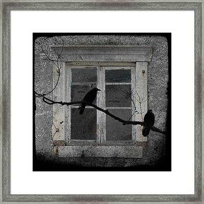 Window Dressing Framed Print by Gothicolors Donna Snyder