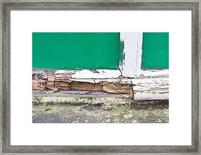 Window Frame Rot Framed Print by Tom Gowanlock