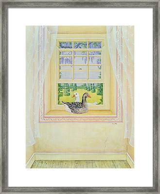Window Geese Framed Print by Ditz