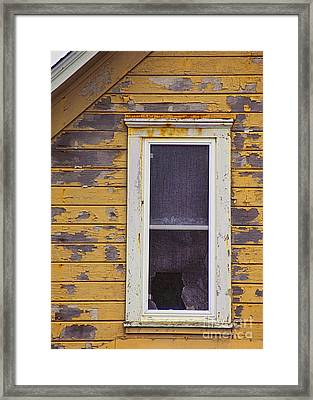Window In Abandoned House Framed Print by Jill Battaglia