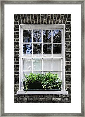 Window In London Framed Print by Elena Elisseeva