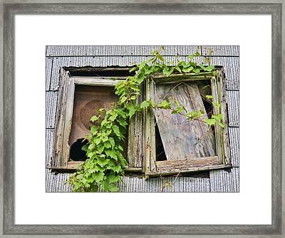 Window Shade 2 Framed Print by Jeffrey Platt