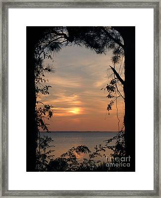 Window To Another World Framed Print by Ela Sita