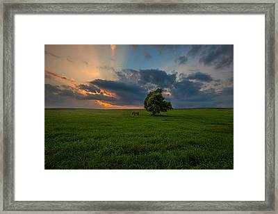 Windows Sd Framed Print by Aaron J Groen