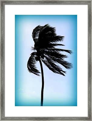 Winds Of Blue Framed Print by Karen Wiles