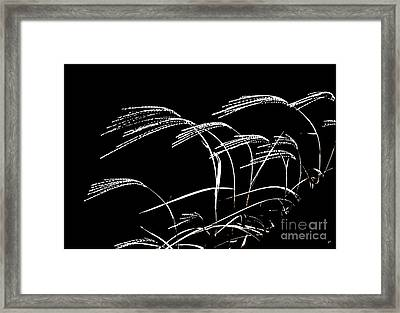 Windswept Grasses Framed Print by Gerlinde Keating - Galleria GK Keating Associates Inc