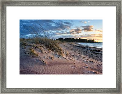 Windy Evening Framed Print by Anna Grigorjeva