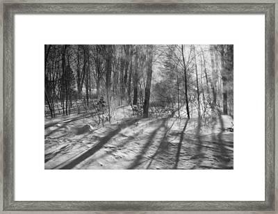 Windy Winter Bw Framed Print by Karol Livote