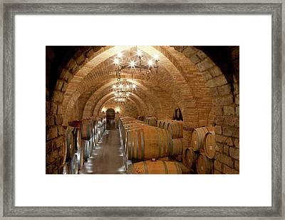 Wine Barrels In A Winery Framed Print by Peter Menzel