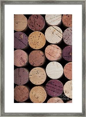 Wine Corks 1 Framed Print by Jane Rix
