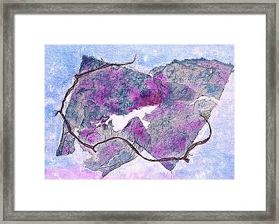 Wine Country In Northern California  Framed Print by Asha Carolyn Young
