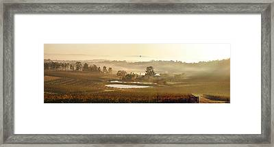 Wine Country Framed Print by Rick Drent