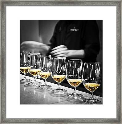 Wine Tasting Glasses Framed Print by Elena Elisseeva