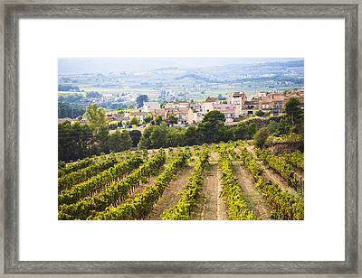 Winemaking In The Largest Wine Region Framed Print by Carlos Sanchez Pereyra