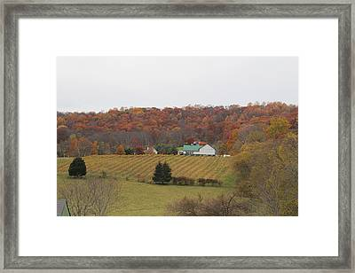 Winery In Virginia At Fall Framed Print by Renee Braun