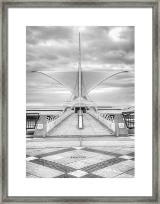 Wing Span Framed Print by Scott Norris